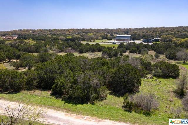 201 Meadow View Drive, Wimberley, TX 78676 (MLS #434675) :: Kopecky Group at RE/MAX Land & Homes