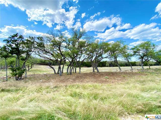 2144 Andalusia, Canyon Lake, TX 78133 (MLS #435012) :: The Zaplac Group