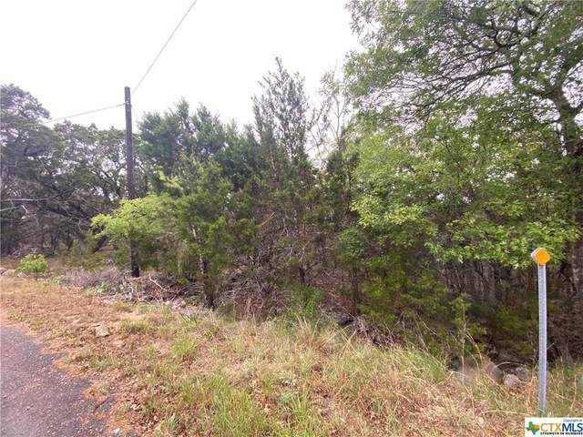 385 Ridge Wood Trail, Canyon Lake, TX 78070 (MLS #435194) :: Texas Real Estate Advisors