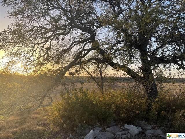 57 Summit Ledge Drive, Johnson City, TX 78636 (MLS #435581) :: Kopecky Group at RE/MAX Land & Homes