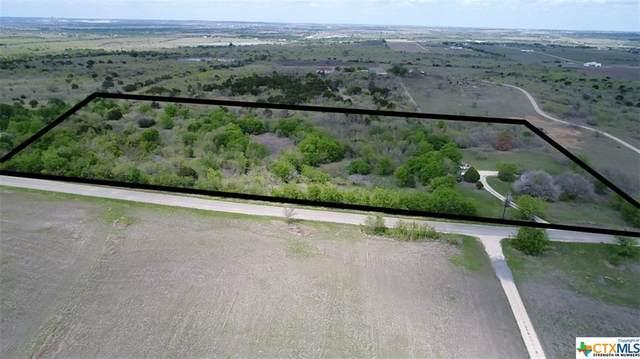 900 Dietert Road, Seguin, TX 78155 (MLS #435972) :: The Zaplac Group
