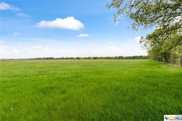 14022 State Highway 317, Temple, TX 76504 (#436357) :: Realty Executives - Town & Country