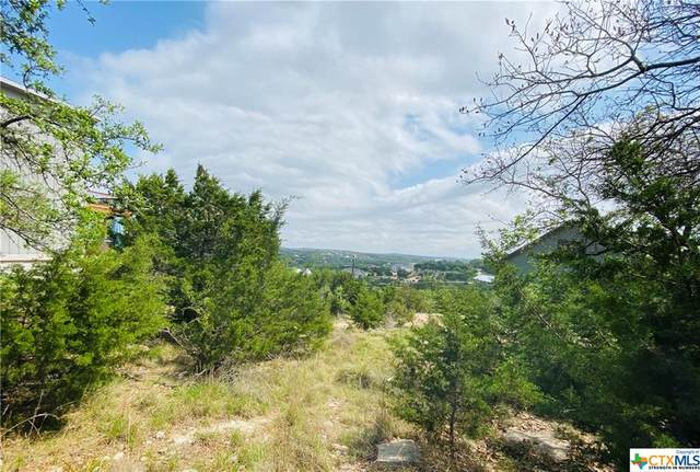 10706 Lake Park Drive, Dripping Springs, TX 78620 (MLS #436683) :: The Zaplac Group