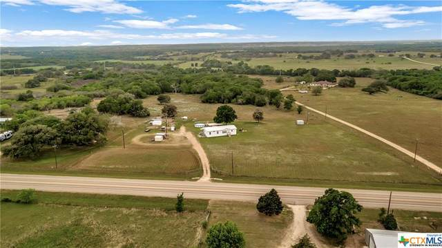 8930 Us Highway 183, Cuero, TX 77954 (MLS #436892) :: The Zaplac Group