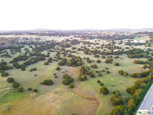 TBD County Road 3300, Kempner, TX 76539 (MLS #439144) :: The Zaplac Group