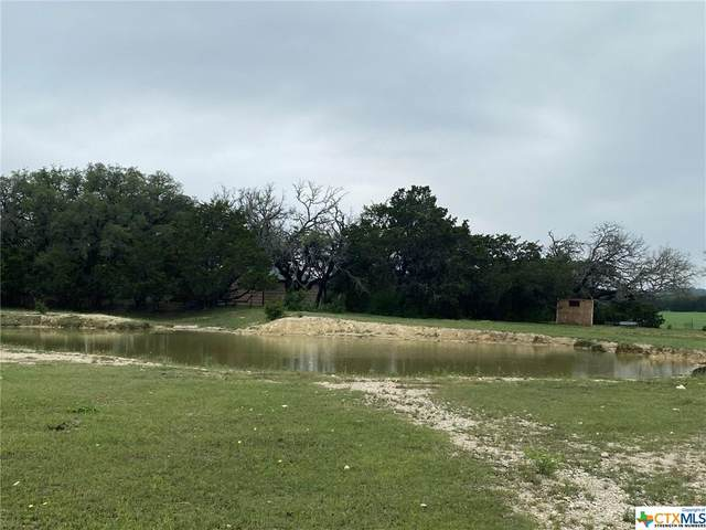 000 Briggs Road, Killeen, TX 76549 (MLS #441720) :: Brautigan Realty