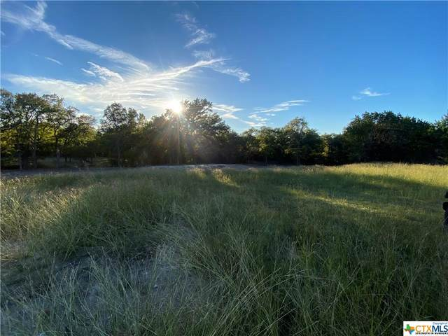 965 Greystone Drive, Copperas Cove, TX 76522 (#442223) :: Empyral Group Realtors