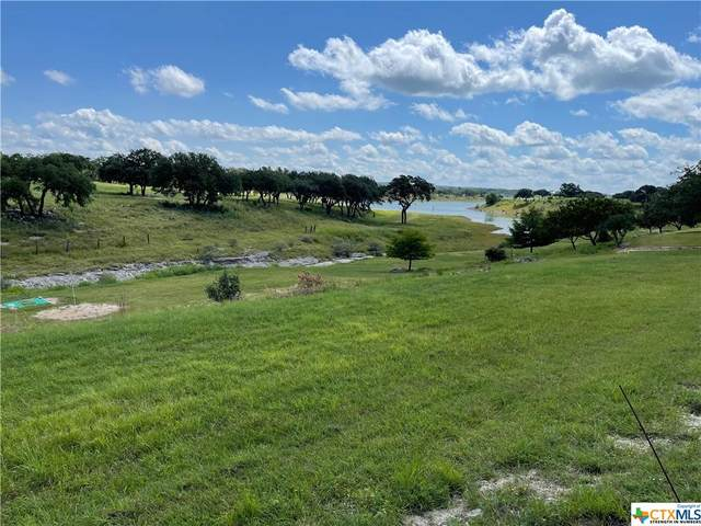 203 Swift Place, Spring Branch, TX 78070 (MLS #442774) :: Kopecky Group at RE/MAX Land & Homes