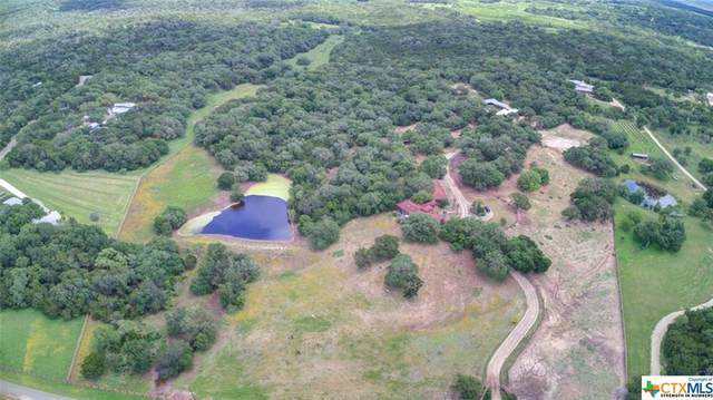 430 Mountain Laurel Drive, New Braunfels, TX 78132 (MLS #442920) :: The Real Estate Home Team
