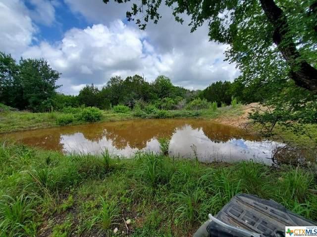 67 S Private Road 404, Goldthwaite, TX 76844 (MLS #443563) :: Texas Real Estate Advisors