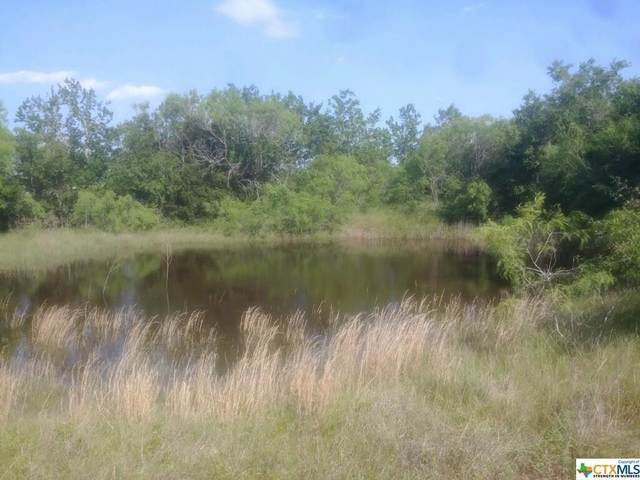 4758 Old Mcmahan Road, Lockhart, TX 78644 (MLS #444203) :: The Zaplac Group