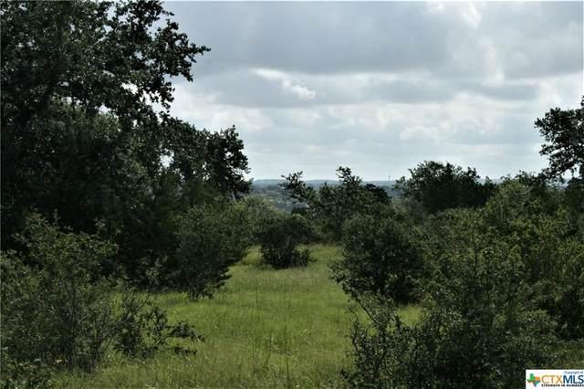 1024 Star Ridge, Spring Branch, TX 78070 (MLS #444596) :: Brautigan Realty