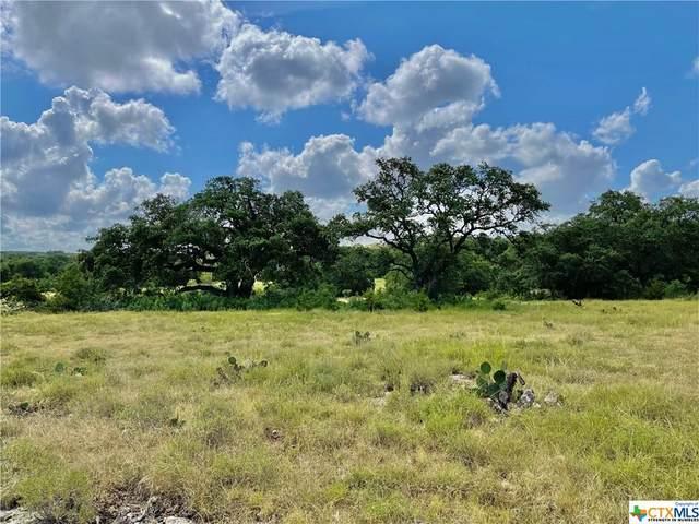 3035 Bridlewood Ranches Drive, San Marcos, TX 78666 (MLS #448850) :: Vista Real Estate