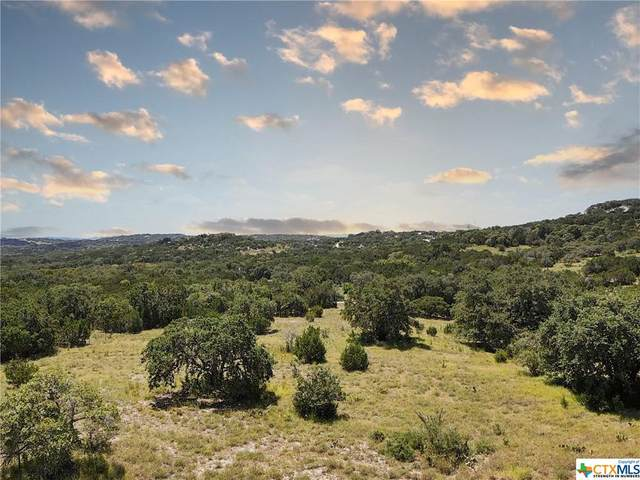 2061 Willow Springs, Bulverde, TX 78163 (MLS #449056) :: The Zaplac Group