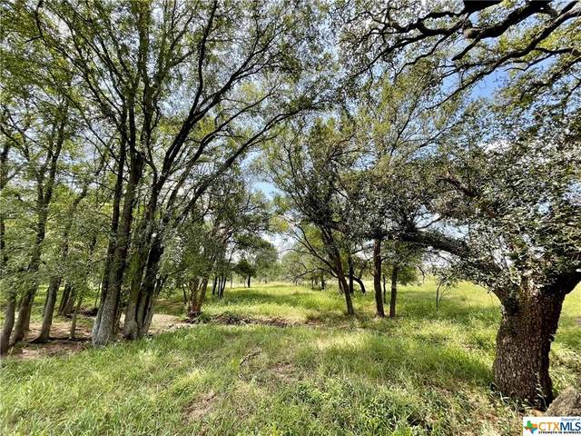 167 Cannon Creek Drive, Gonzales, TX 78629 (MLS #449197) :: Kopecky Group at RE/MAX Land & Homes