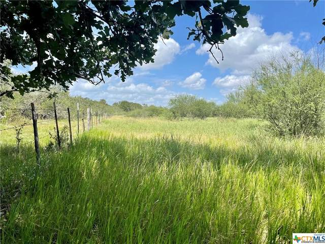 539 Cannon Creek Drive, Gonzales, TX 78629 (MLS #449204) :: Kopecky Group at RE/MAX Land & Homes