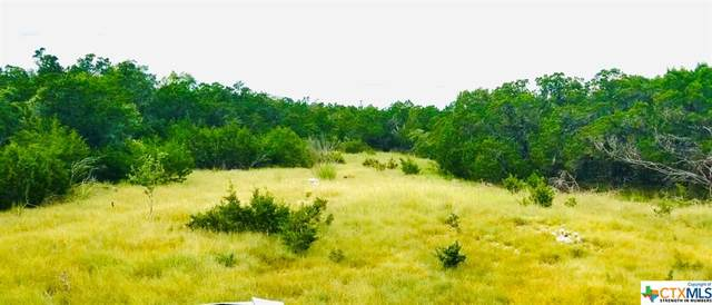 407 Headwaters Ranch Rd, Kendalia, TX 78027 (MLS #449510) :: Kopecky Group at RE/MAX Land & Homes