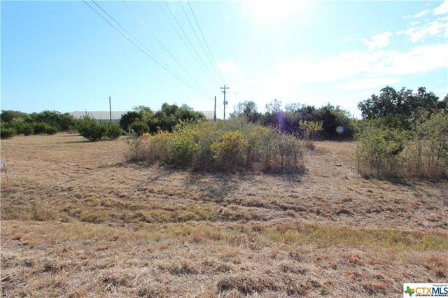 118 Bevers Road, Liberty Hill, TX 78642 (#449691) :: First Texas Brokerage Company