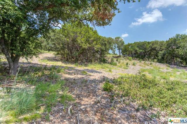 840 Earle Oak Avenue, OTHER, TX 78163 (MLS #450484) :: Kopecky Group at RE/MAX Land & Homes
