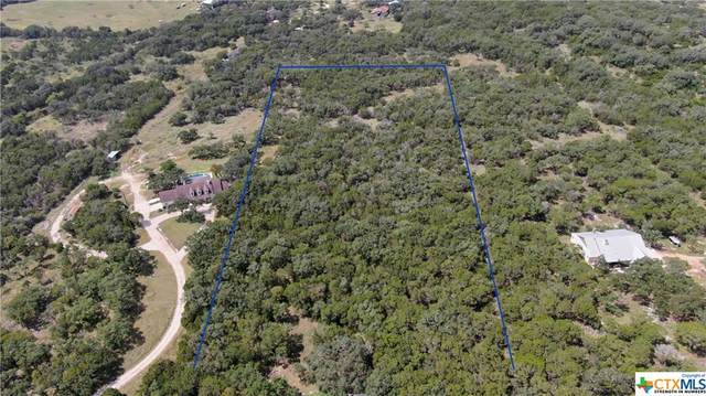 1631 Whispering Woods Trail, New Braunfels, TX 78132 (MLS #450768) :: The Zaplac Group