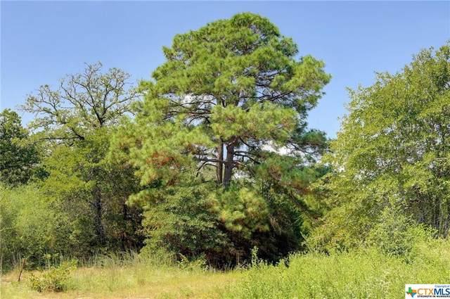 3057 Sand Hill, McMahan, TX 78616 (MLS #450932) :: Texas Real Estate Advisors