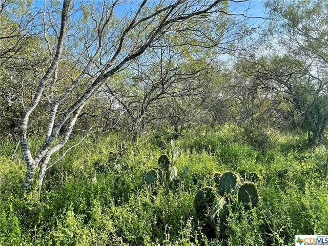 Lot 24 Cannon North Drive, Gonzales, TX 78629 (MLS #451753) :: Kopecky Group at RE/MAX Land & Homes