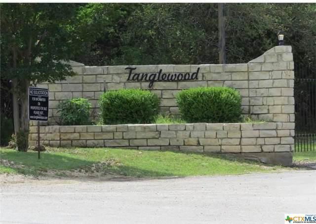 16053 Charlya Drive, Temple, TX 76502 (MLS #452693) :: Texas Real Estate Advisors
