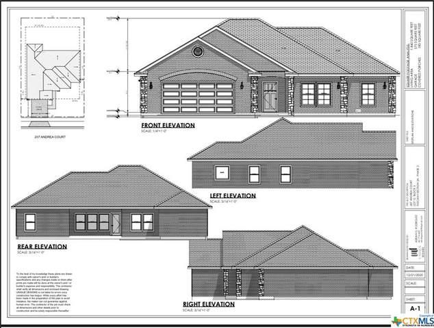 207 Andrea Court, Victoria, TX 77904 (MLS #454036) :: Texas Real Estate Advisors