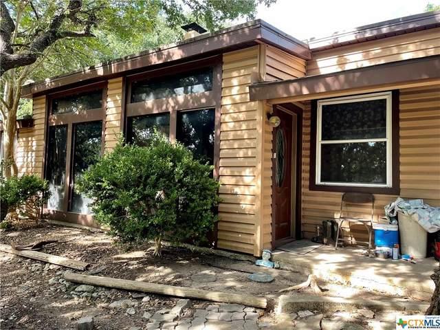 1165 Purple Sage, Canyon Lake, TX 78133 (#454878) :: Empyral Group Realtors