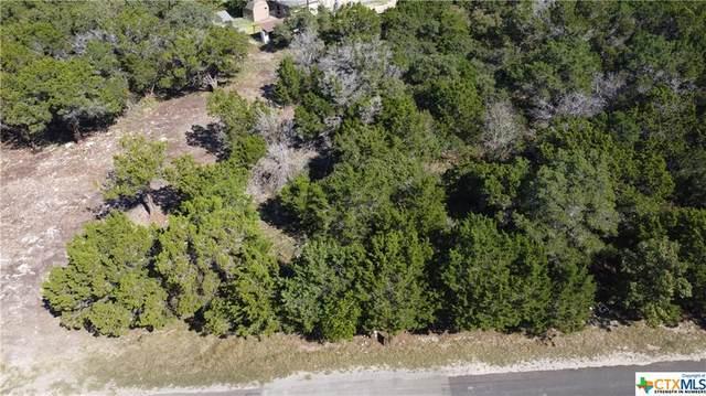 16004 Crockett Drive, Temple, TX 76549 (MLS #455002) :: Texas Real Estate Advisors