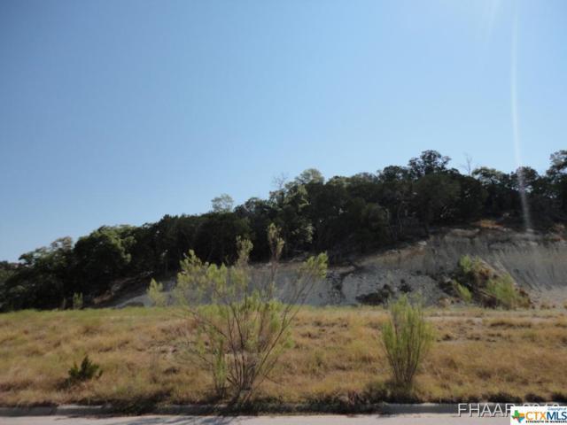 1907 Fall Creek Drive, Harker Heights, TX 76548 (MLS #8210440) :: Kopecky Group at RE/MAX Land & Homes