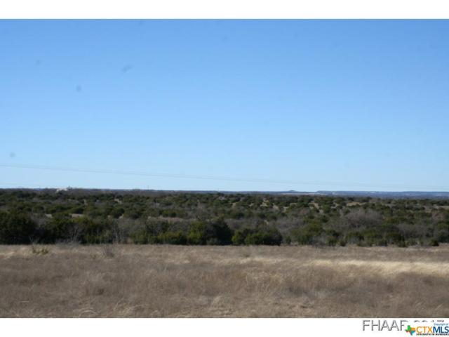 11.5 Acres Hwy 281, Lampasas, TX 76550 (MLS #8214152) :: Magnolia Realty