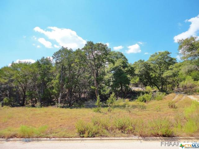 3533 Shoreline Drive, Harker Heights, TX 76548 (MLS #8214406) :: Erin Caraway Group