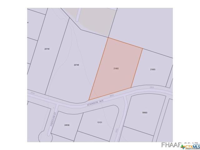 2901 Atkinson Avenue, Killeen, TX 76543 (MLS #8216018) :: Texas Premier Realty
