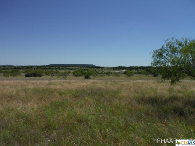 Tract 4 Private Road 3642, Kempner, TX 76522 (MLS #8217688) :: Marilyn Joyce | All City Real Estate Ltd.