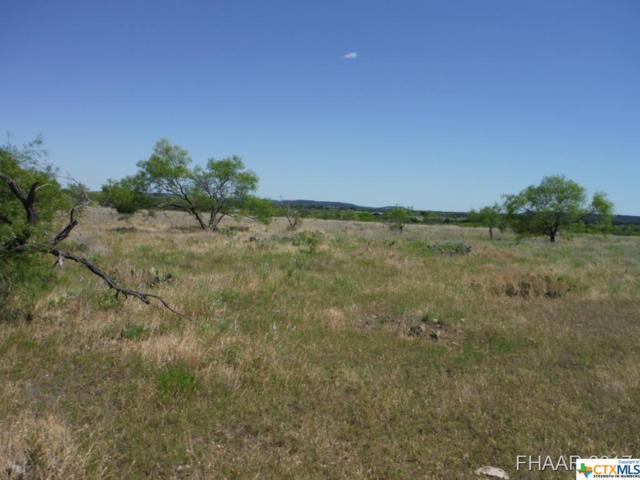 Tract 5 Private Road 3642, Kempner, TX 76522 (MLS #8217690) :: Marilyn Joyce | All City Real Estate Ltd.