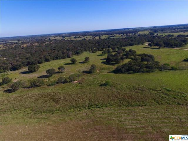 2110 County Road, Stockdale, TX 78160 (MLS #220720) :: RE/MAX Land & Homes