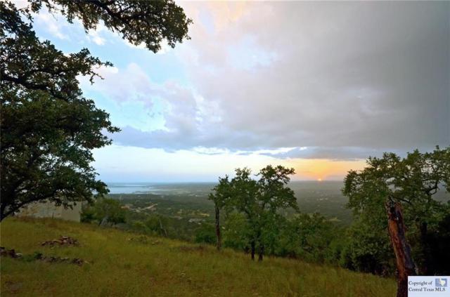1191 Eagle Point Drive, Fischer, TX 78623 (MLS #300767) :: Vista Real Estate