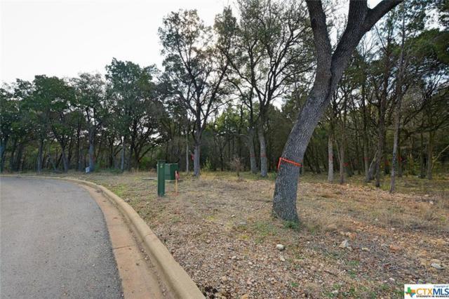2366 Geneseo Oaks, New Braunfels, TX 78132 (MLS #301208) :: Erin Caraway Group