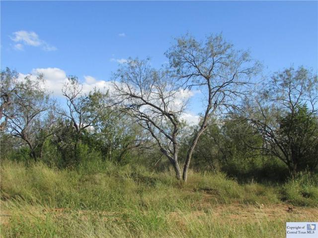 833 Rawhide, Seguin, TX 78155 (MLS #305009) :: Magnolia Realty