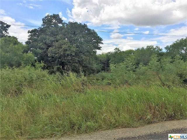 3841 Jakes Colony, Seguin, TX 78155 (MLS #305060) :: Magnolia Realty