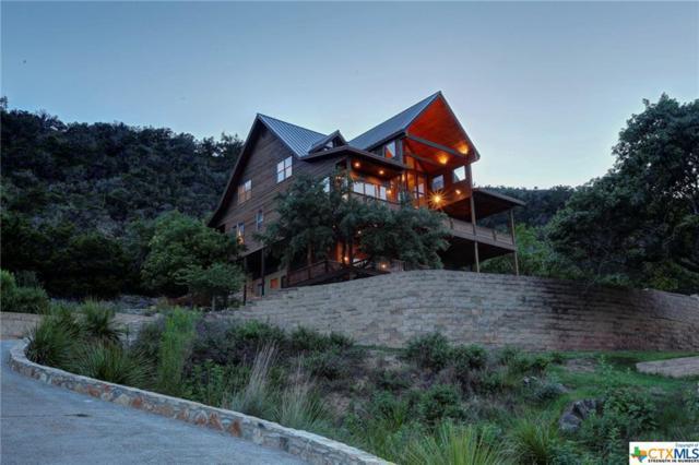 1805 Triple Peak Dr, Canyon Lake, TX 78133 (MLS #316389) :: Magnolia Realty
