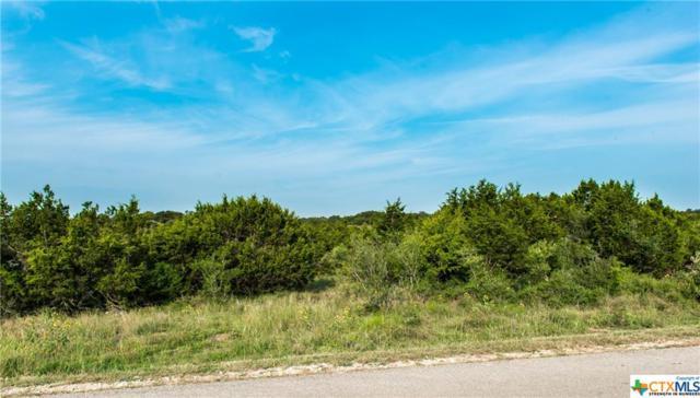 902 Oak Bluff, New Braunfels, TX 78132 (MLS #323701) :: Erin Caraway Group