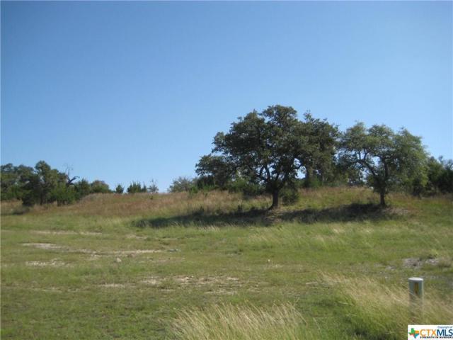2456 George Pass #2, Canyon Lake, TX 78133 (MLS #326458) :: Magnolia Realty