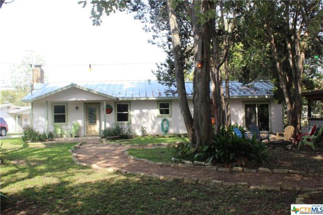 855 E Torrey Street, New Braunfels, TX 78130 (MLS #332309) :: Magnolia Realty