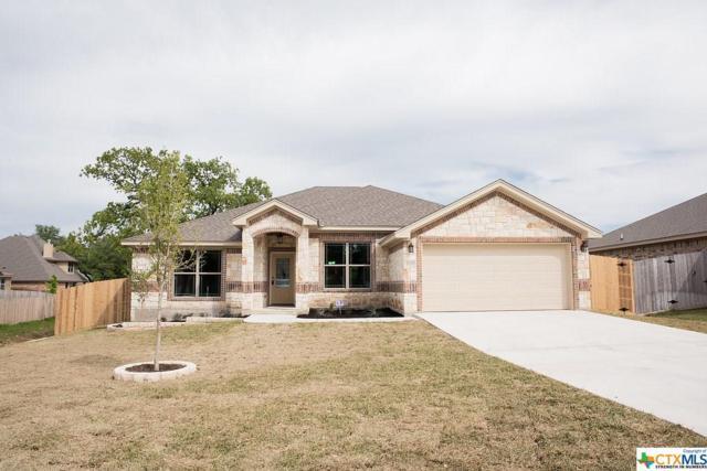 3044 Mystic Mountain Drive, Belton, TX 76513 (MLS #333999) :: Erin Caraway Group