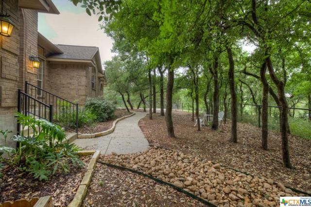 468 Shady Hollow, New Braunfels, TX 78132 (MLS #334433) :: Erin Caraway Group