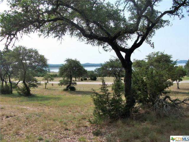 1157 Brads Flight, Canyon Lake, TX 78133 (MLS #334695) :: Erin Caraway Group