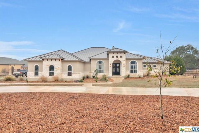 1173 Sapling Spring, New Braunfels, TX 78132 (MLS #337688) :: Magnolia Realty