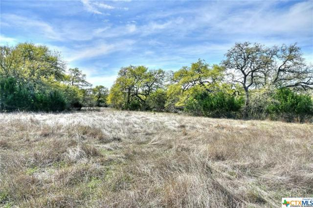 1953 Hunters Cove, New Braunfels, TX 78132 (MLS #339227) :: Erin Caraway Group